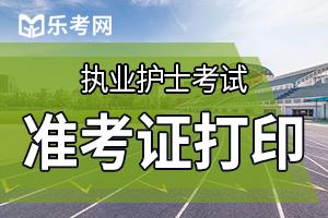中国卫生人才网:2020护士执业资格准考证打印入口