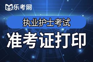 天津执业护士准考证打印入口:中国卫生人才网