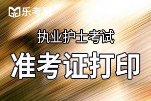 河南执业护士准考证打印入口:中国卫生人才网
