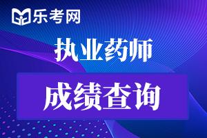 辽宁执业药师成绩查询入口:中国人事考试网